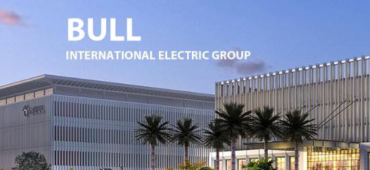 BULL-INTERNATIONAL